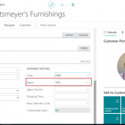 Dynamics 365 Business Central (Navision) - Customer Card- Agent Assignment